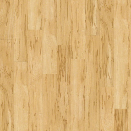 Shaw Plank Flooring: SHAW Classico LVT Floor